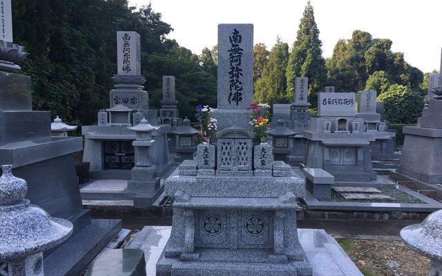 上市町墓地公園の画像5