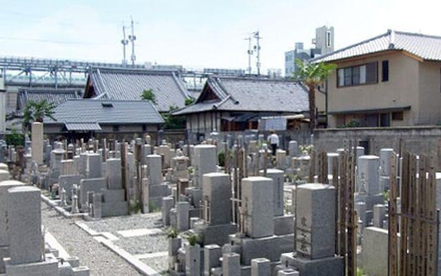 大光寺の画像2