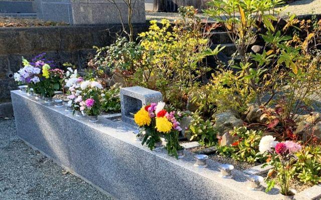 プレミアム愛川の里 樹木葬墓地の画像1